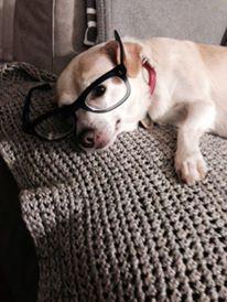 rayla-glasses
